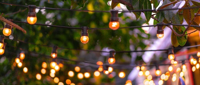 incandescent dome lights hung in yard for the holidays