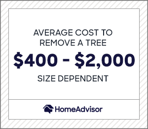 the average cost to remove a tree is $400 to $2,000 depending on size