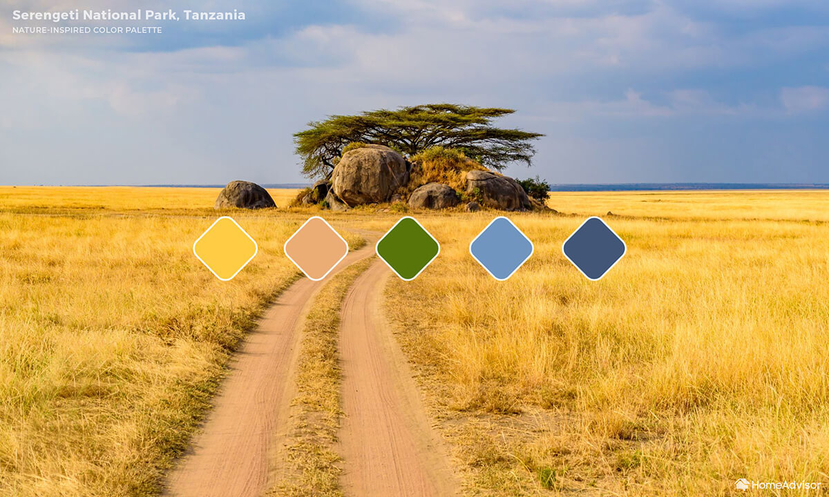 Standing on a pale dirt path looking across a golden grassy field at a grouping of short trees and boulders.