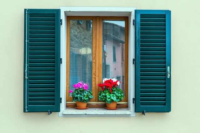 teal shutters against a light green house