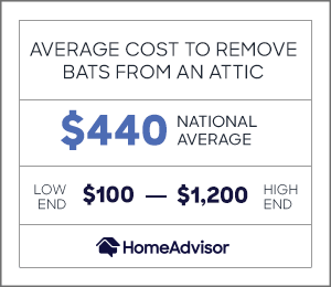 the average cost to remove bats from your home is $400 or $100 to $1,200