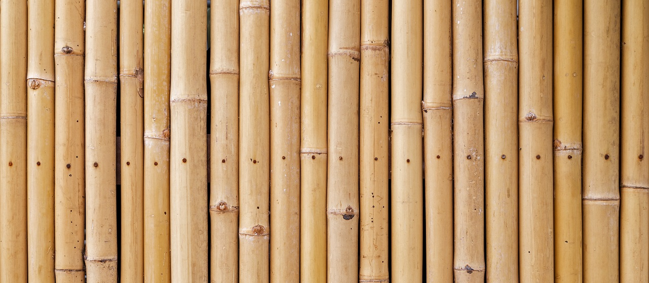 close-up of bamboo fencing