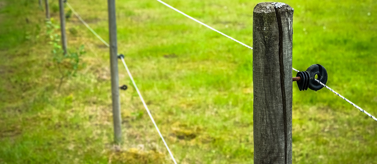 close up of electric fence