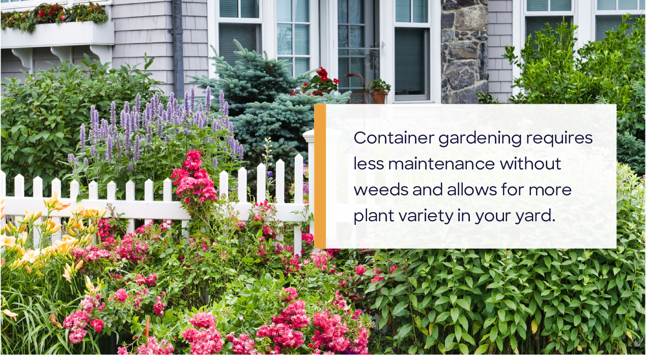 container garden with colorful plants