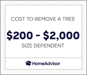 the average cost to remove a tree is $200 to $2,000 depending on size