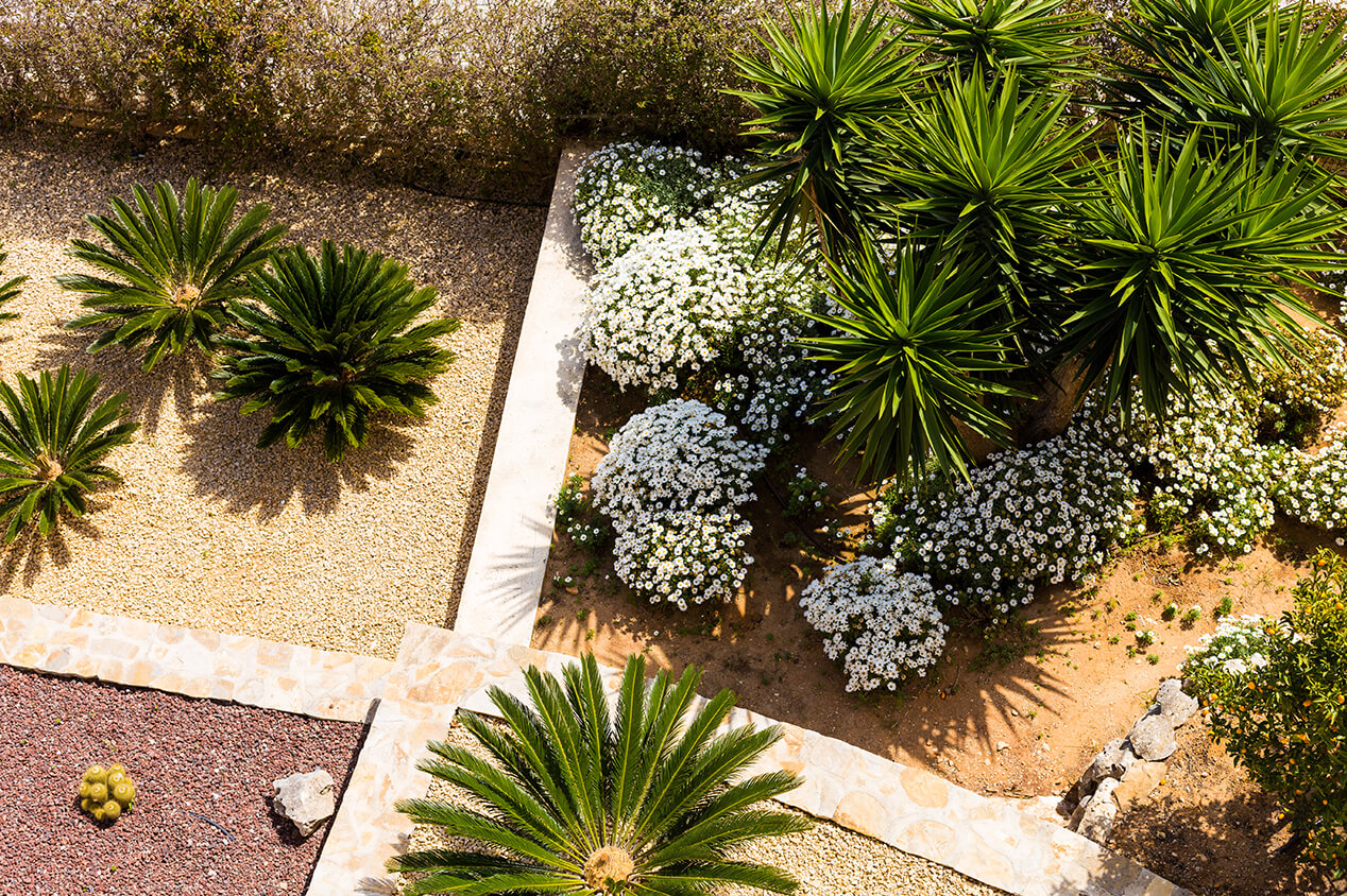 hardscape with plants
