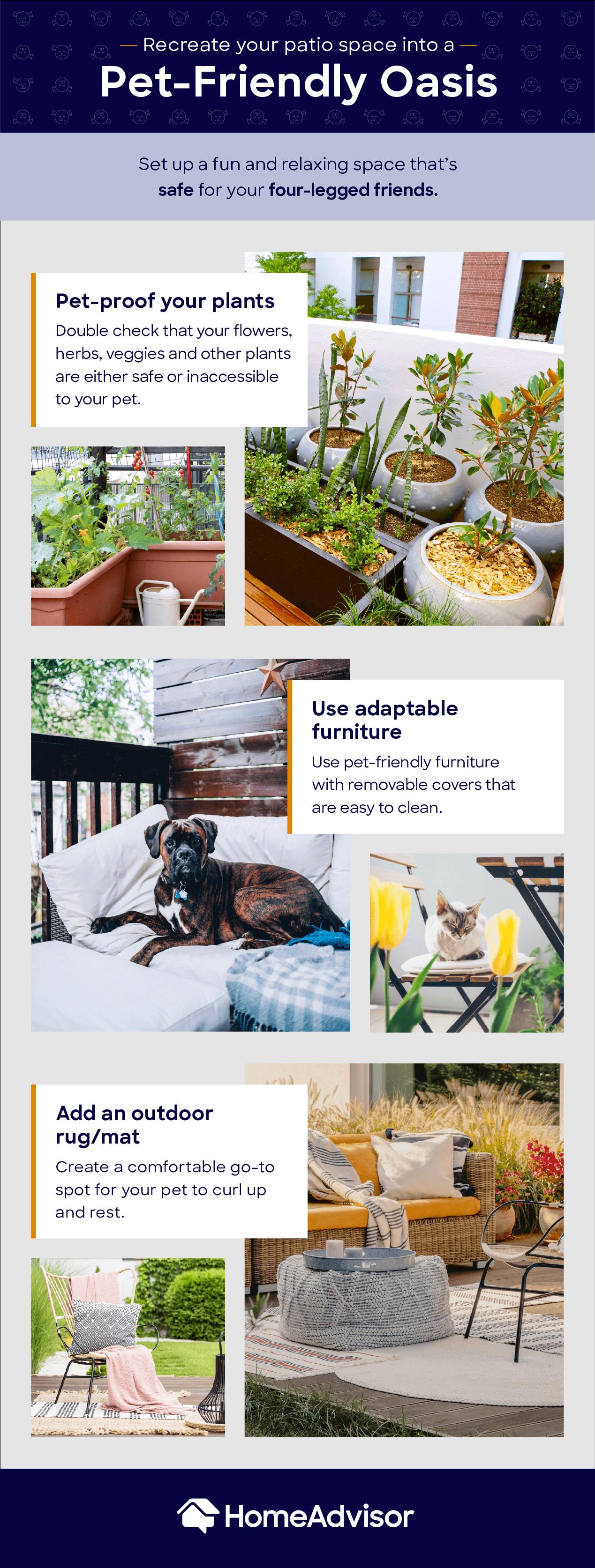 pet friendly outdoor mood board
