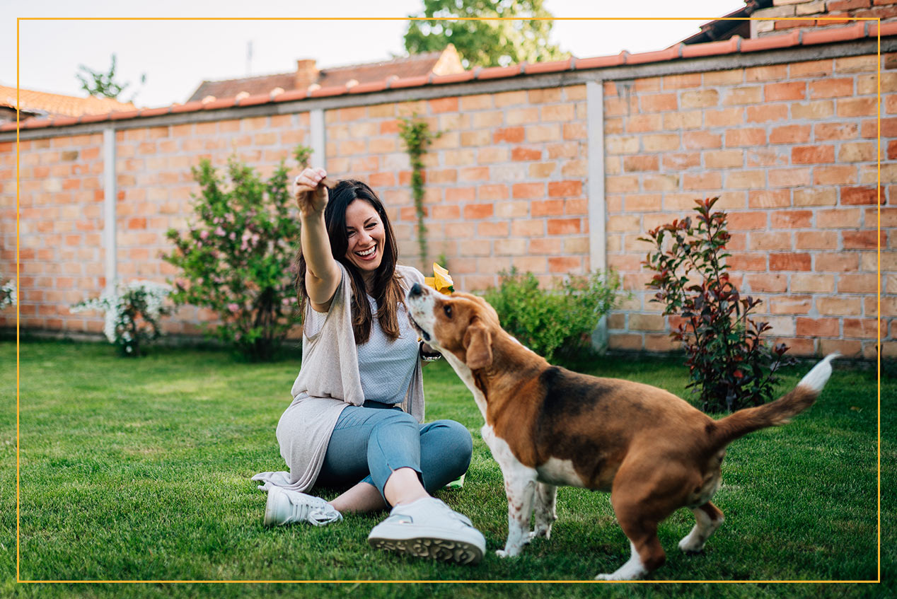 woman playing with dog in backyard