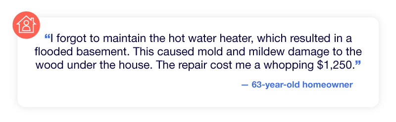 Experience of mold and mildew after the basement flooded due to neglecting home maintenance.