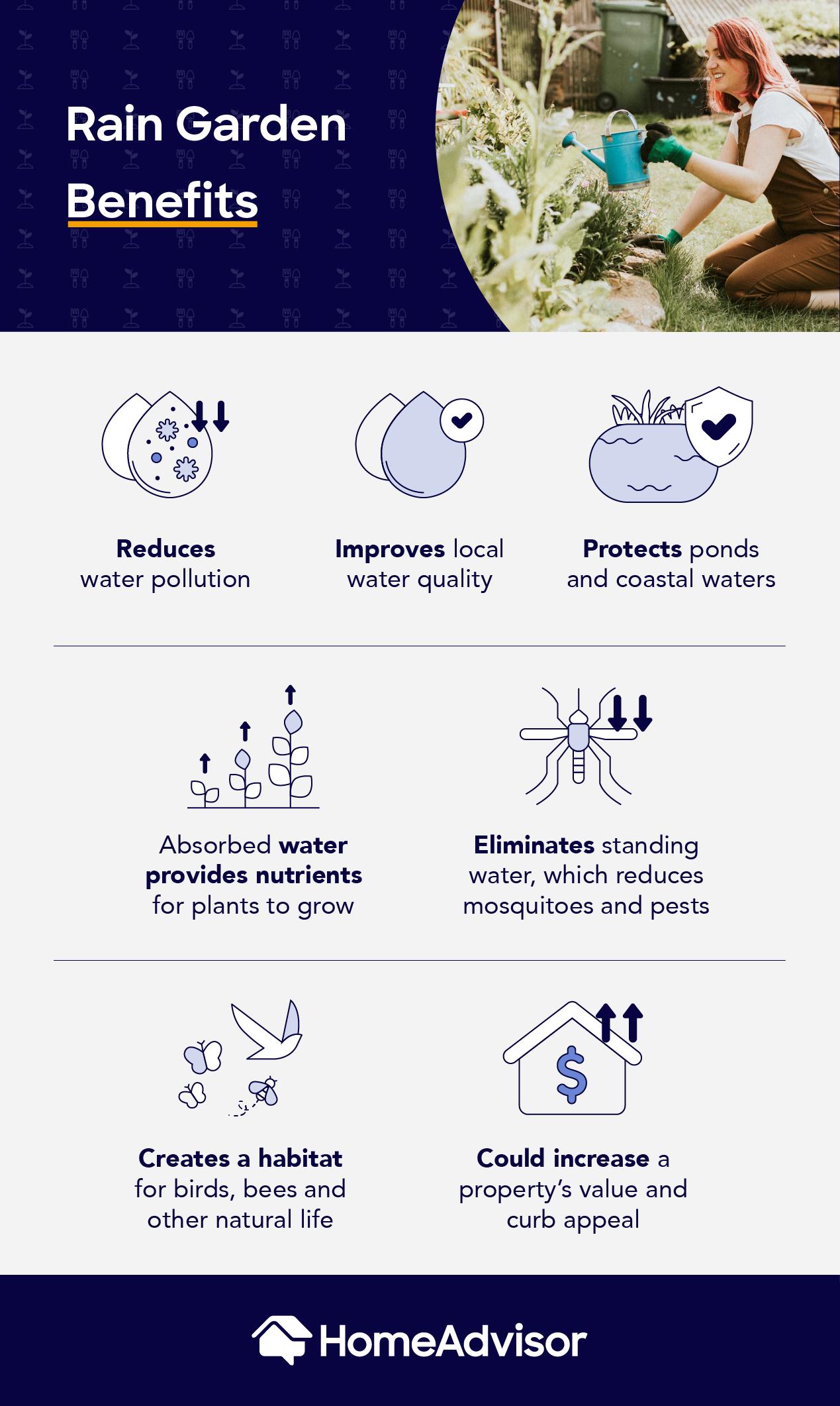 rain garden benefits